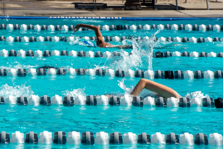swimmers-in-lane